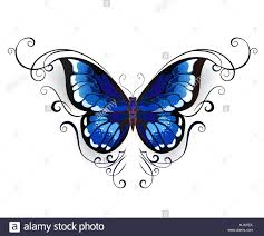 blue butterfly decorated with pattern on a white