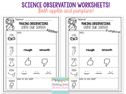 updated 5 senses packet sliding into second grade