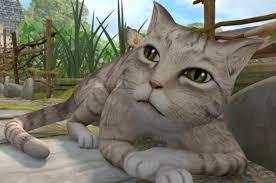 mr mcgregor s garden rabbit mr mcgregor s cat rabbit tv series wiki fandom