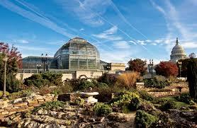 Botanic Gardens Dc 21 United States Botanic Garden Photographing Washington D C