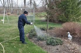 spraying trees for disease berger hargis landscape