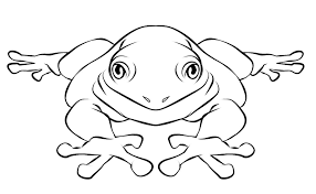 frog coloring pages bestofcoloring