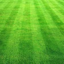 Landscaping Evansville In by Absolutely Affordable Lawn Care Landscaping 1122 Mary St