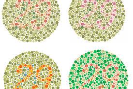 Color Blind Picture High Student U0027s Google Chrome Extension Aids Color Blind