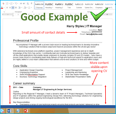 Sample Technical Report Engineering Good Curriculum Vitae Samples