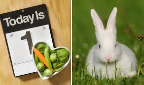 rabbit rabbit why do we say pinch punch and white rabbit on the day of