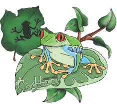frog tattoo pictures free download clip art free clip art on