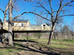 Building A Zip Line In Your Backyard by Tree Houses And Backyard Zip Lines For Austin Texas
