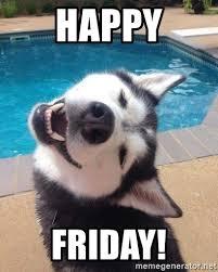 Happy Friday Meme - happy friday tgif husky meme generator