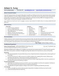 financial resume prepossessing professional resume exles finance on financial