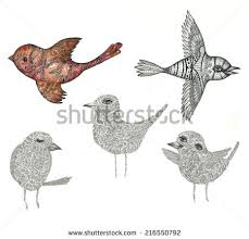 illustration beautiful realistic birds owl brown stock