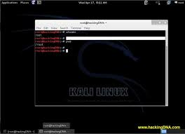 tutorial de uso de kali linux shell scripting on kali linux hackingdna