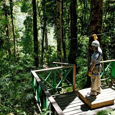 best zip lining tours in costa rica travel leisure