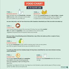 table food for 9 month old mam pls tell me what is the time table for diet chart 6 month old child