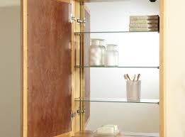 cabinet ideal medicine cabinet organizer ideas engrossing