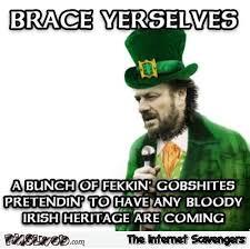 Brace Meme - brace yourselves st patrick s day meme pmslweb