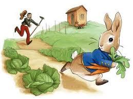 kristi valiant peter rabbit