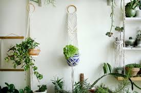 macrame plant holder hanging planter macrame plant hange