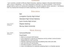 Stocker Resume Sample by Grocery Stocker Resume Examples