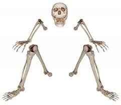 posable halloween skeleton skeletons skulls and bones props all nightmare factory costumes