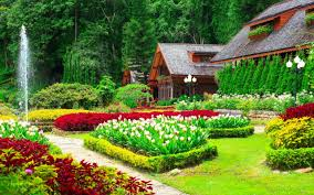 beautiful flowers and gardens in house garden seat amongst the