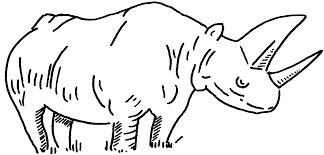 rhinoceros coloring pages rhinoceros rhinoceroscoloringpages