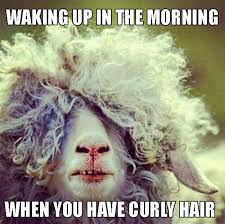 Hot Mess Meme - 22 memes that are way too real for people with curly hair