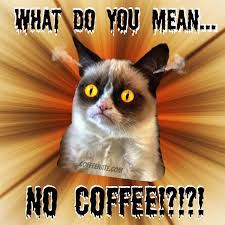 Angry Cat Good Meme - original images coffeenate com