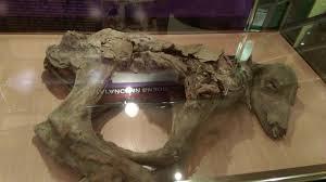 yakutia secrets batagayskogo fault earth chronicles
