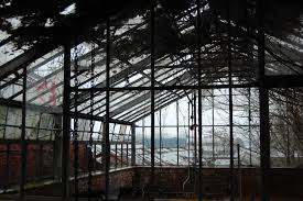 boyce thompson greenhouse u2013 holding court