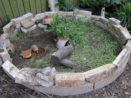 box turtle backyard habitat
