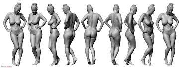 Female Body Reference For 3d Modelling 81 Jpg 2551 964 Anatomy Pinterest Anatomy Anatomy