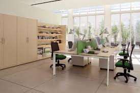 plant for office feng shui design tips techniques for your office life just