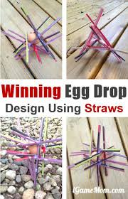 Challenge Drop Successful Egg Drop Project Design With Straws