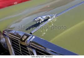 jaguar car leaping cat on stock photos jaguar car leaping cat on