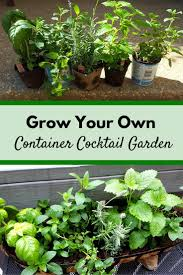 28 best backyard gardening images on pinterest gardening