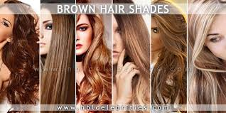 from dark brown to light brown hair brown hairs with dark light and blonde highlights