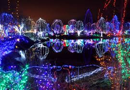 columbus zoo christmas lights 8 holiday light displays to visit in columbus this winter