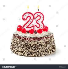 royalty free birthday cake with burning candle u2026 223455349 stock