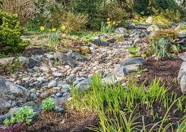 Home Depot Garden Rocks 7 Landscape Solutions For Problem Areas Garden Club