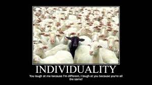 Sheeple Meme - sheep motivational sheeple know your meme