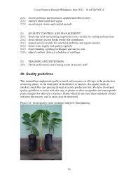cocoa nursery manual best nursery practices u2013 plantacion de