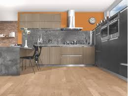 cuisine integre cuisine chene clair ou gris foncé fabrication française neha cuisine