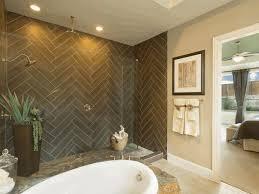 Lucite Bathtub Small Master Bathroom Renovation Ideas Dark Brown Finish Varnished