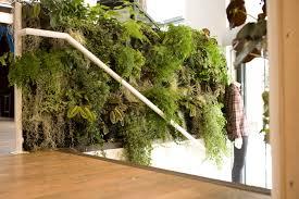 Vertical Wall Garden Plants by Livingroom Vertical Wall Planter Hanging Wall Planters Indoor
