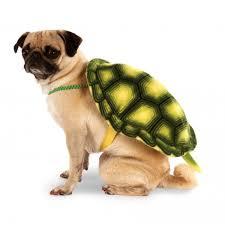 dog costume wizard of oz animal dog costumes baxterboo