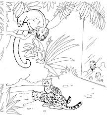 zoo 0 free printable coloring pages