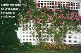 how to build an arbor trellis how to differentiate trellises arbors gazebos and pergolas