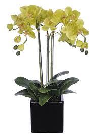 Artificial Flower Arrangement In Vase Amazon Com House Of Silk Flowers Artificial Triple Stem
