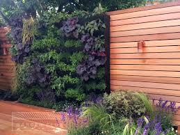 Urban Gardening Tips Chiswick Compact Urban Garden Club London Herb Living Wall Design